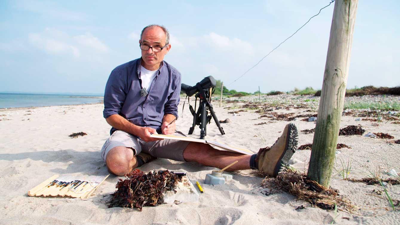 NDR – NaturNah<br/>Der Vogelmaler – unterwegs an der Küste