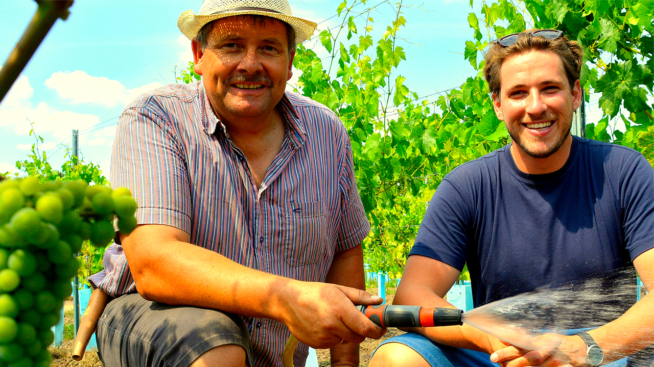 NDR – NaturNah<br>Weinanbau im hohen Norden